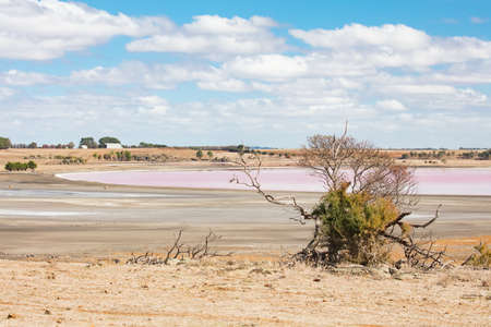 An ancient salt lake shimmers pink during a drought near Streatham in western Victoria, Australia