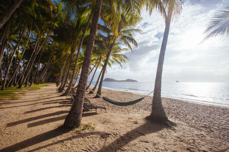 Palm Cove Beachfront