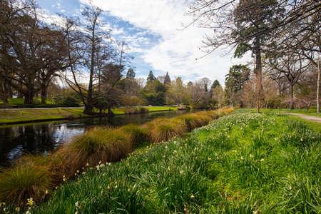Christchurch Botanic Gardens in New Zealand Stok Fotoğraf