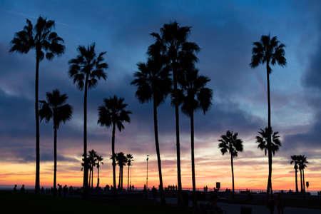 Venice Beach Sunset in Los Angeles USA Banco de Imagens