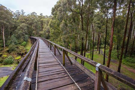 Noojee Trestle Rail Bridge in Victoria Australia Фото со стока