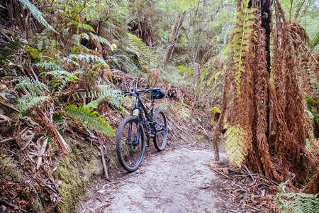 Forrest Mountain Bike Park in Australia