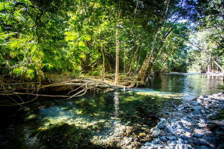 A 4WD only road across a river near Cape Tribulation in the Daintree, Queensland, Australia