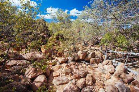 OBriens Creek Landscape in Australia
