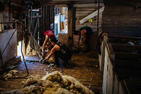 Australian Wool Shed Stock Photo