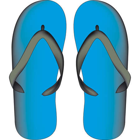 flipflops: slippers