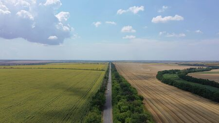 Landscape of sunflower, wheat fields and road. Aerial view