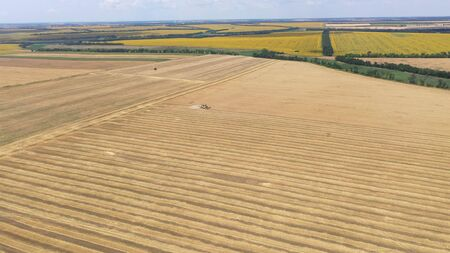 Aerial View Of Combine Harvester Harvesting Wheat Crop. 写真素材