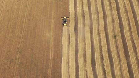 Aerial view on the combine working on the large wheat field, Harvester on the wheat field, View from above