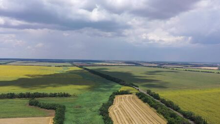 Rural landscape. You can see an aerial view of fields of wheat and sunflowers. Overcast sky