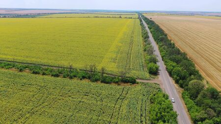 Highway near the fields of sunflower and wheat. Aerial view Stockfoto