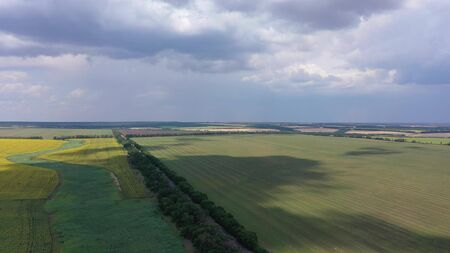 Aerial view of farm fields on the background of the cloudy sky. Fields of wheat and sunflower
