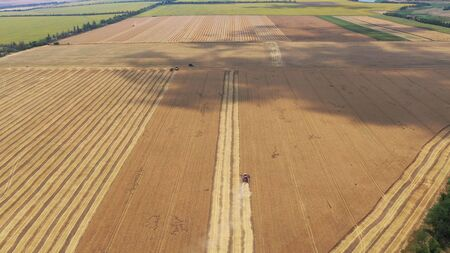 Combine harvester on a wheat field. Harvesting. Aerial view 写真素材