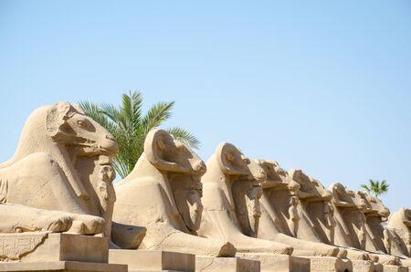 Karnak Temple. Avenue of sphinxes with ram's head. Around Luxor Egypt