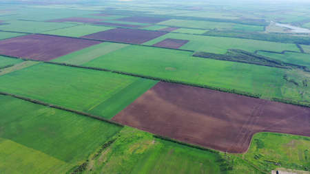 Aerial view of agricultural fields in spring. Plowed fields and fields with green vegetation
