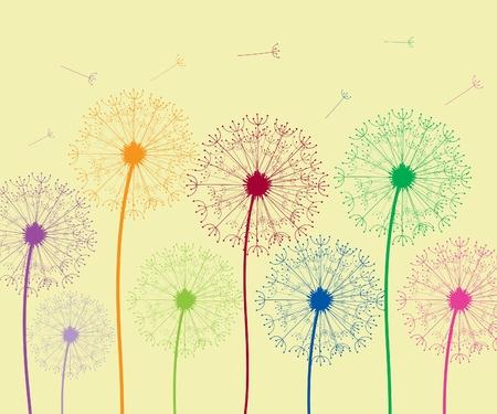 flimsy: Dandelion colorful