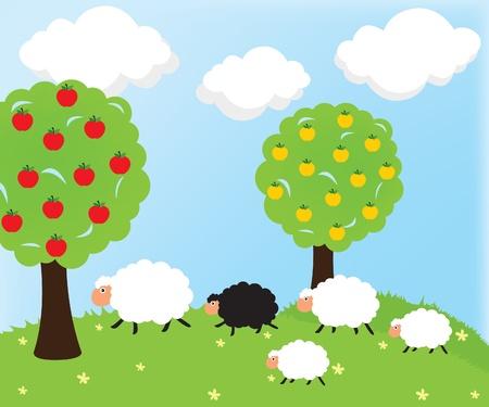 Sheep and nature Vector