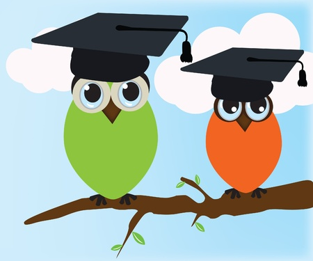 Graduating owl Illustration