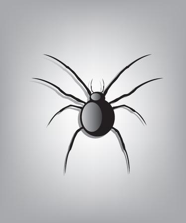 spidery: Black spider illustration