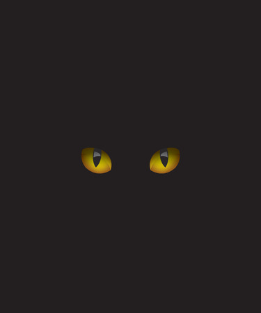 Cat eyes in the dark