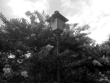 bw: BW pole lamp Stock Photo