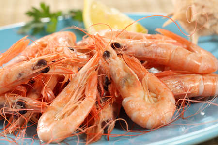 fresh boiled prawns from portuguese coast photo