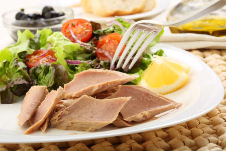 canned tuna with salad photo