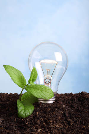concept about renew energy - lamp bulb on, in soil photo