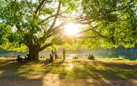 サンパウロ、ブラジル - 2014年 8 月年頃: 人々 は、イビラプエラ公園をお楽しみください。イビラプエラ公園、サンパウロ、ブラジルで最大の公園 報道画像