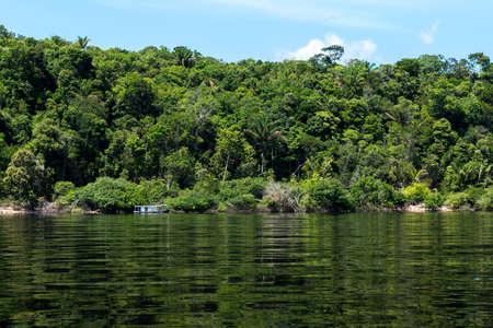 rio amazonas: Los humedales del Amazonas en Brasil Foto de archivo