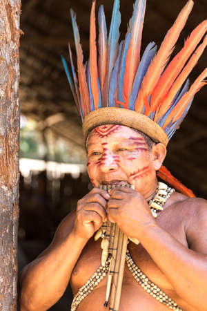 south american: Native Brazilian man playing wooden flute at an indigenous tribe in the Amazon