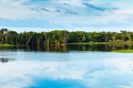 refelction: Wetland in Amazon, Brazil, South America Stock Photo