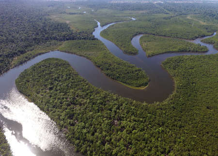 amazon rainforest: Aerial view of Amazon rainforest, Brazil