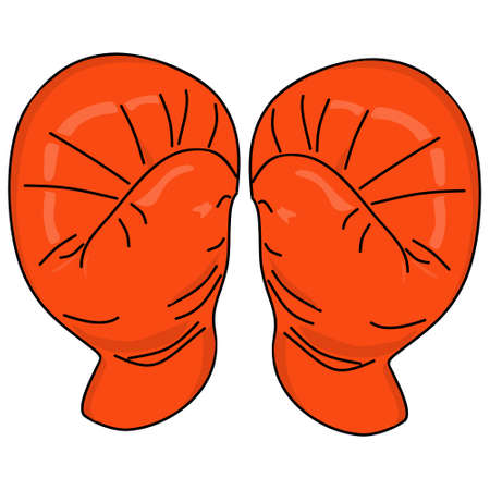 knock out: Red Boxing gloves vector