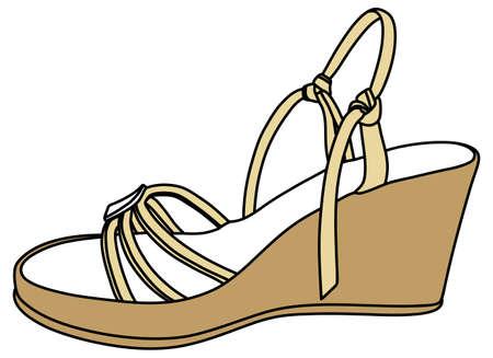 elegant woman: Elegant woman shoe, illustration, vector Illustration