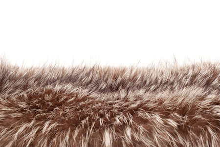 fox fur: Brown a white fox fur