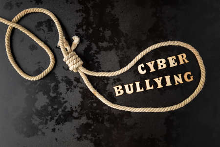 internet bullying or cyber bullying
