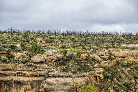 Mesa Verde National Park in Colorado, USA