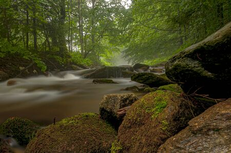 Beautiful mountain river on a rocky shore. Gorgeous scene in misty forest.