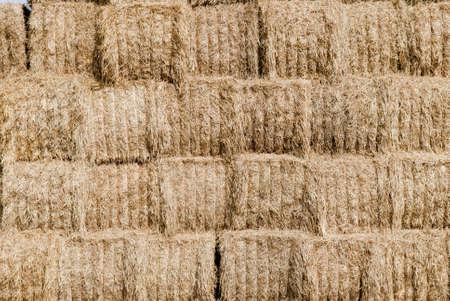 straw, hay background; rural background.