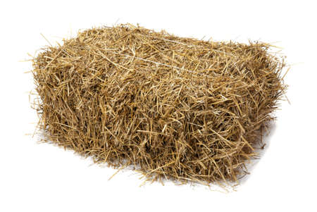 Studio shot of hay, isolated on white  Stock Photo