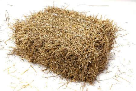 hay bale: Studio shot of hay