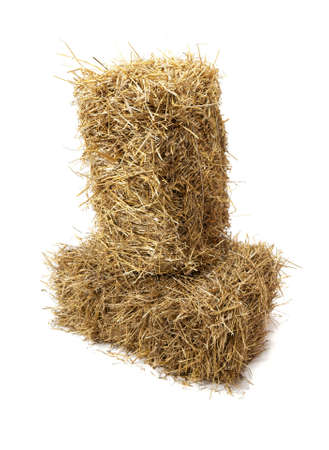 Studio shot of hay, isolated on white  Stock Photo