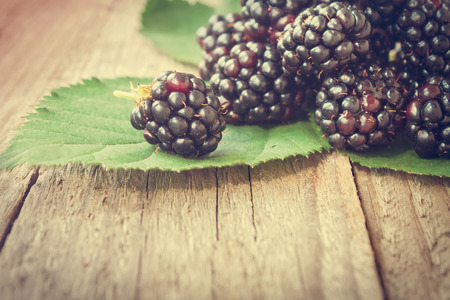 toned image: Ripe Blackberries on rustic wooden background. Toned image