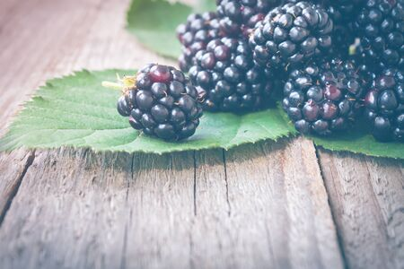 toned image: Fresh Blackberries on rustic wooden background. Toned image Stock Photo