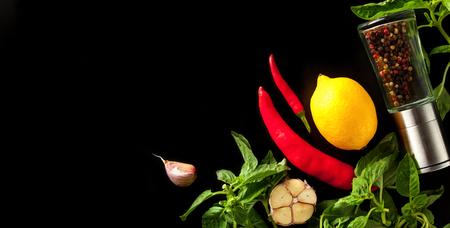 Fresh lemon, basil, garlic, hot chili pepper and spices on dark background Standard-Bild - 109903849