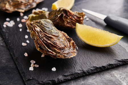 Wild Netherlands oysters served with lemon slices and salt on black marble table