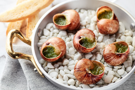 Snails with herbs butter served in pan with bread and white wine on marble table 스톡 콘텐츠
