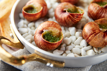 Escargot snails with garlic herbs butter in aluminum pan on rustic wooden background
