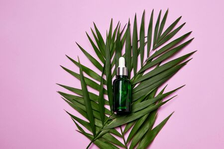 Green dropper bottle with facial essential oil or serum on light purple background with leaves. Natural cosmetic, beauty care or aromatherapy concept.